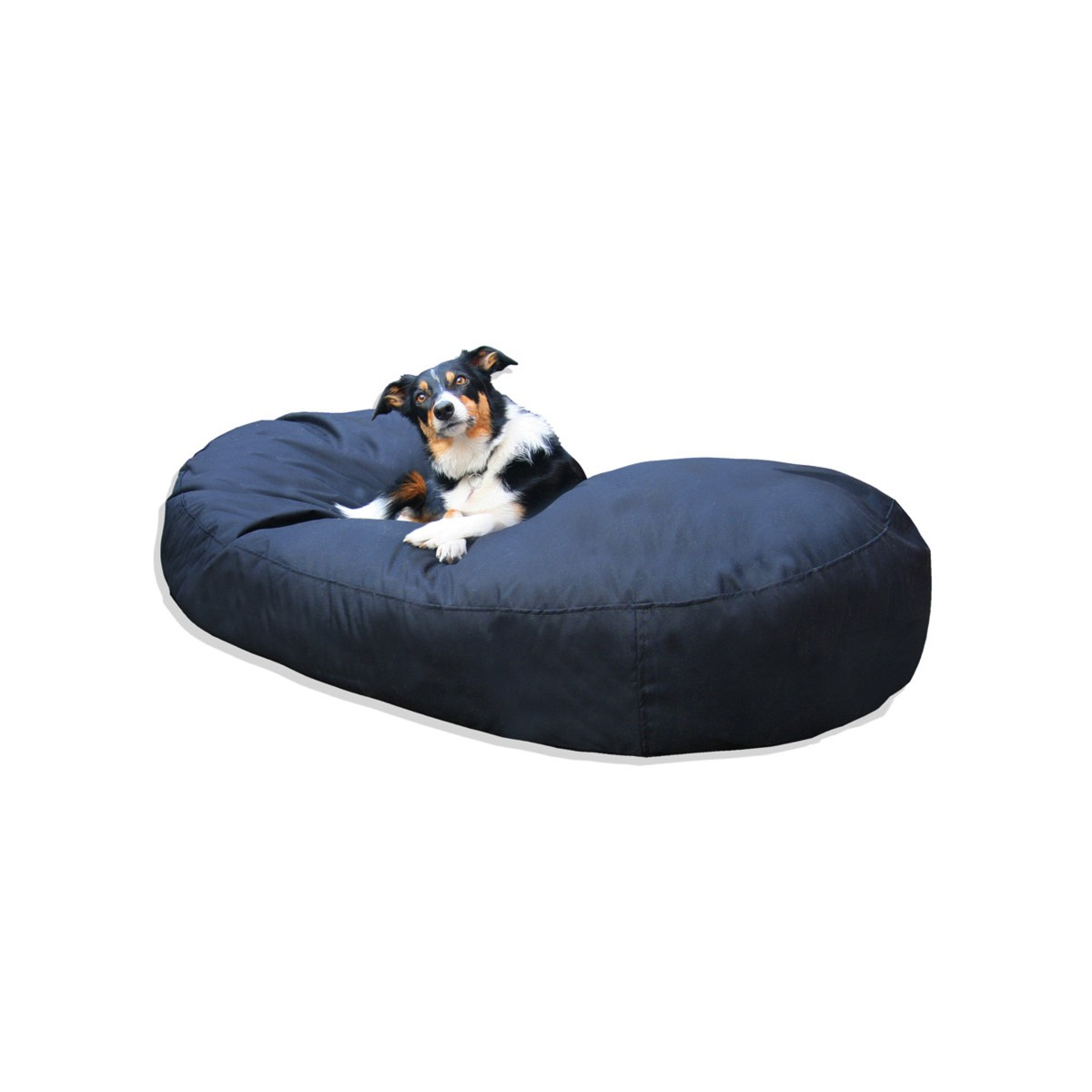 Peachy Big Oval Dog Bed Bean Bag Squirreltailoven Fun Painted Chair Ideas Images Squirreltailovenorg